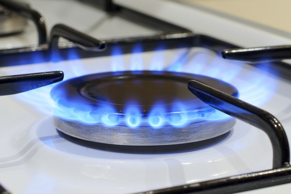 gas boiler safety check , gas appliance service